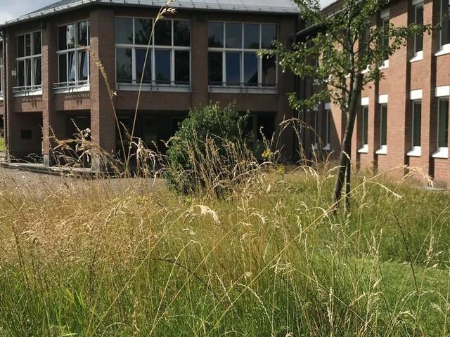 Kontroverse in Hürtgenwald: Bürgermeister nimmt Stellung – und lässt Politiker konsterniert zurück