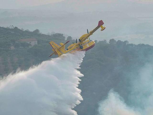 Waldbrände in Italien: Kritische Lage in mehreren Gebieten - höchste Brandrisikostufe auch für Samstag