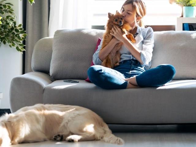 Millennials und Haustiere: Der flauschige Baby-Ersatz?