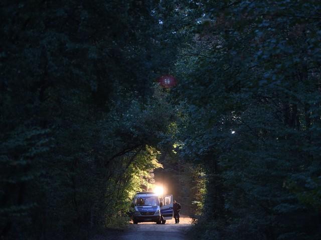 Hambacher Forst: Gericht verfügt vorläufigen Rodungsstopp