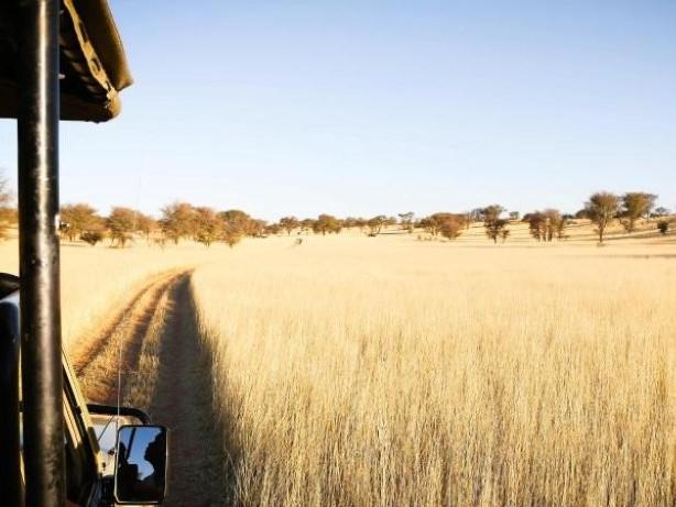 Corona-Regeln: Namibia: Testpflicht auch für geimpfte Reisende