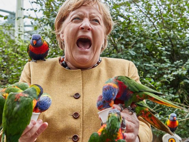Kuriose Bilder von Merkel im Vogelpark