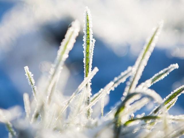 Meteorologen sagen eisiges Winterwetter mit Dauerfrost voraus
