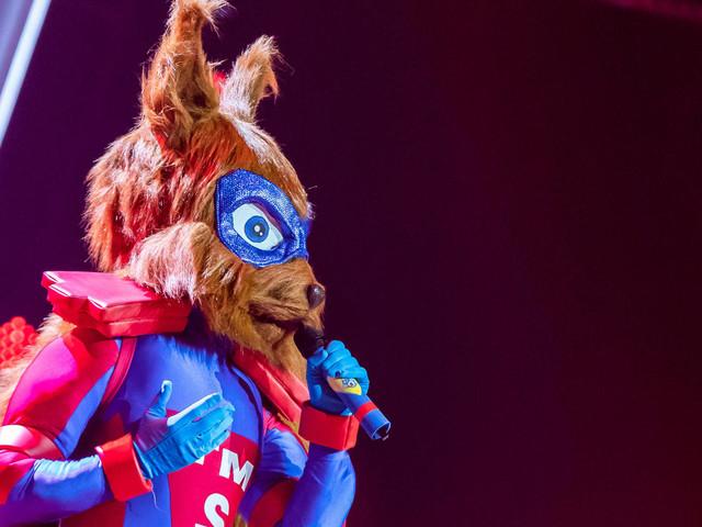 Dieses Topmodel steckt im Eichhörnchenkostüm