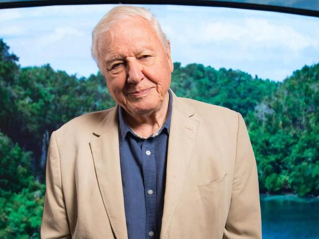 Nach knapp einem Monat: Trotz Rekord: Naturforscher Sir David Attenborough verlässt Instagram