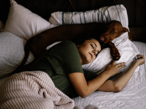 Darf ich meinen Hund mit ins Bett nehmen? Hundeprofi Martin Rütter mit klarem Statement