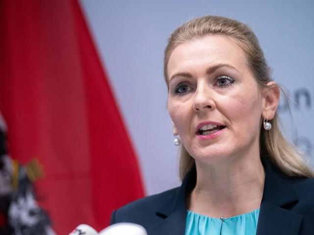 Arbeitsministerin tritt nach Plagiatsvorwurf zurück