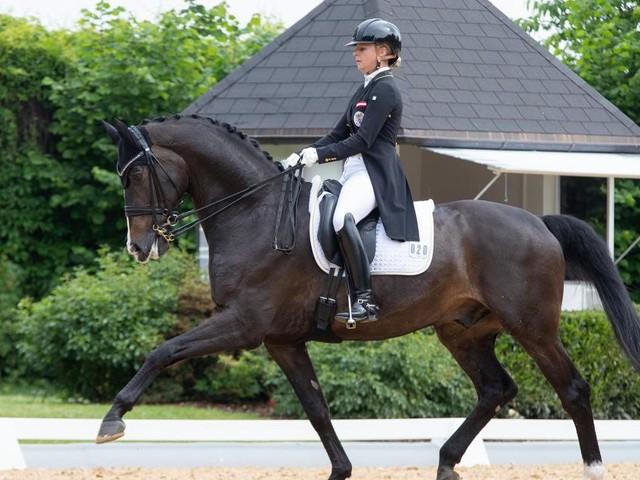 Das Pferd hat Zahnweh: Kein Tokio-Start für Victoria Max-Theurer