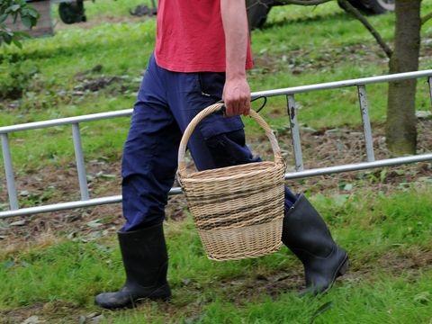 Versicherer will Landwirte von Leitern holen