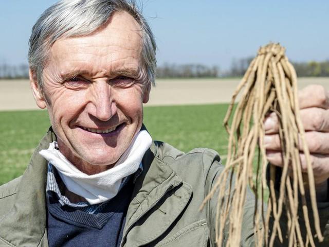 Landwirt Werner Magoschitz über die schwierige Spargelernte