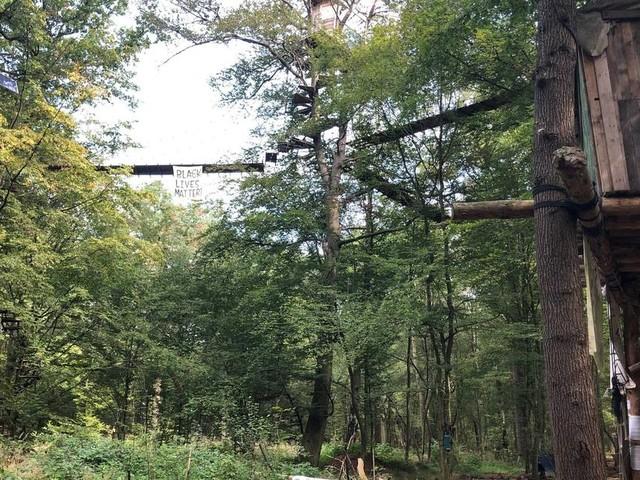 Rechtswidrige Weisung der Landesregierung: Heftiger Streit um Auslegung des Urteils zum Hambacher Forst