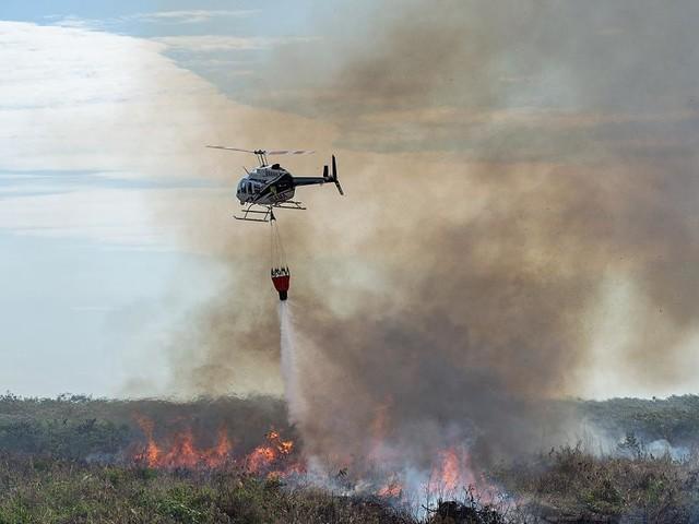 """Tausende Feuer wüten - Bolsonaro wirft Macron bei Amazonas-Waldbränden """"kolonialistische Mentalität"""" vor"""
