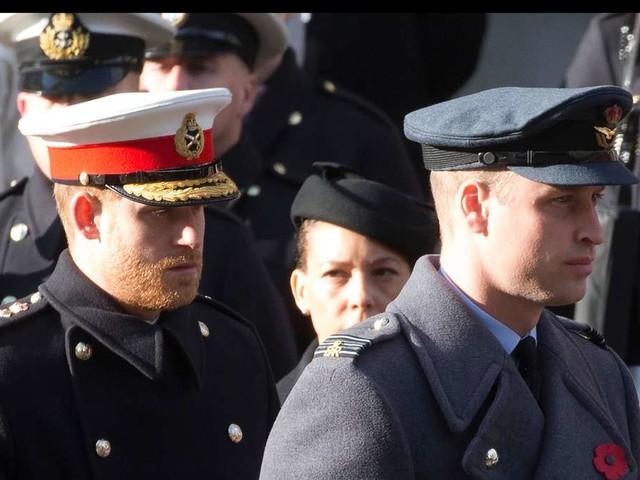 Queen trennt Harry und William bei Prinz Philips Beerdigung - klare Palast-Ansage zum Brüder-Zwist