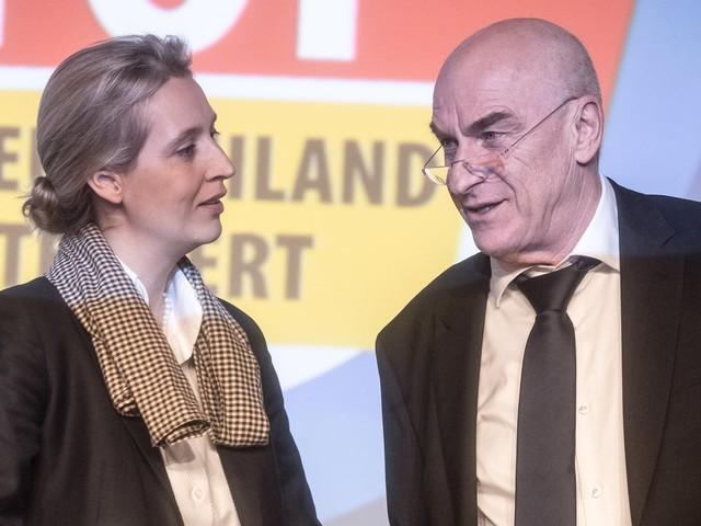 Klaus Fohrmann: Bundesschatzmeister der AfD tritt zurück