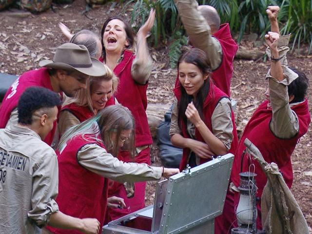 Tag fünf: Dieser Dschungelcamp-Star ist euer Spitzenreiter!