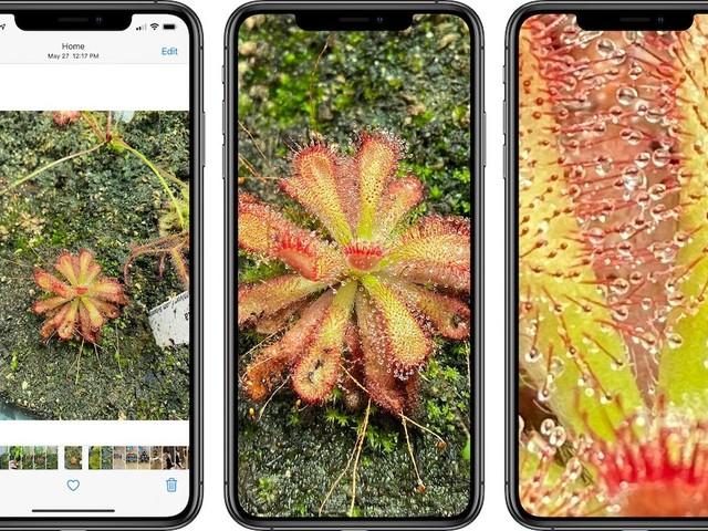 iOS 14: In Fotos kann stärker hineingezoomt werden