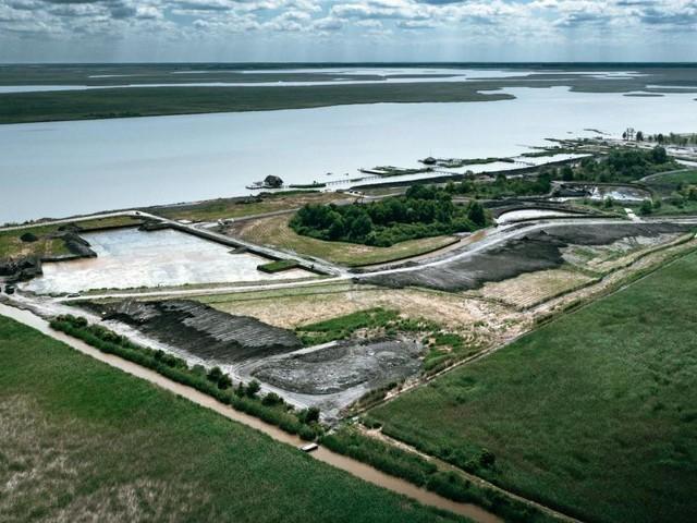 Greenpeace startet Kampf um den Neusiedler See