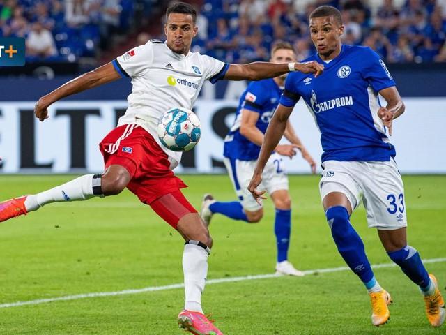 FC Schalke 04 gegen Hamburger SV – Die Highlights im Video