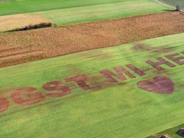 Heiratsantrag auf bayerisch: Bauer sät Liebesbotschaft in ein Feld
