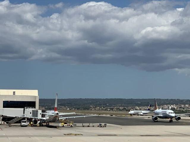 Betrunken im Mallorca-Flieger: Meist Briten oder Deutsche