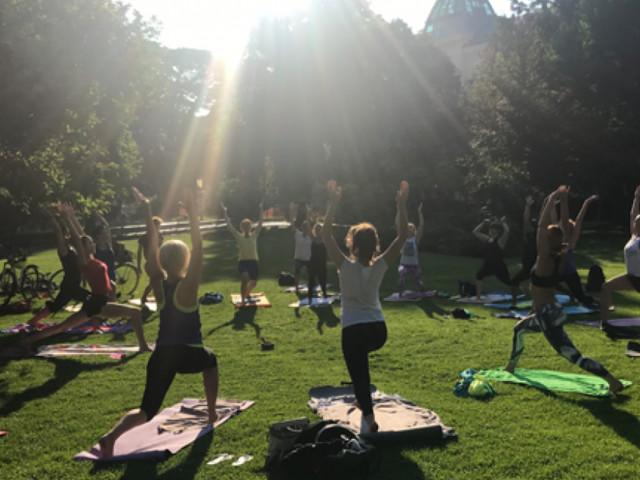 Yoga immer noch hoch im Fitness-Kurs