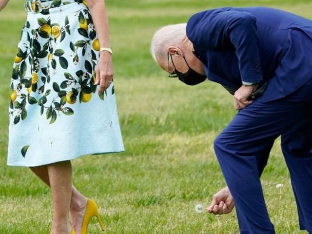US-Präsident: Biden und das Blümchen