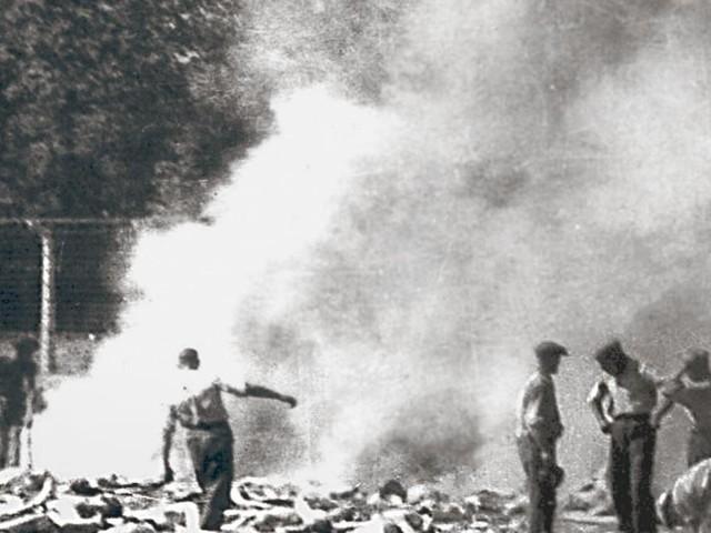 Dieses Foto beweist den Holocaust