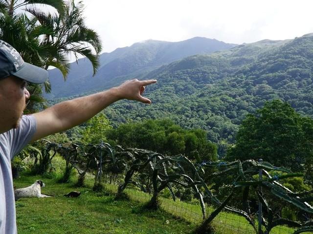 Umweltschutz: Diese kleine Insel zeigt, was einzelne Menschen erreichen können