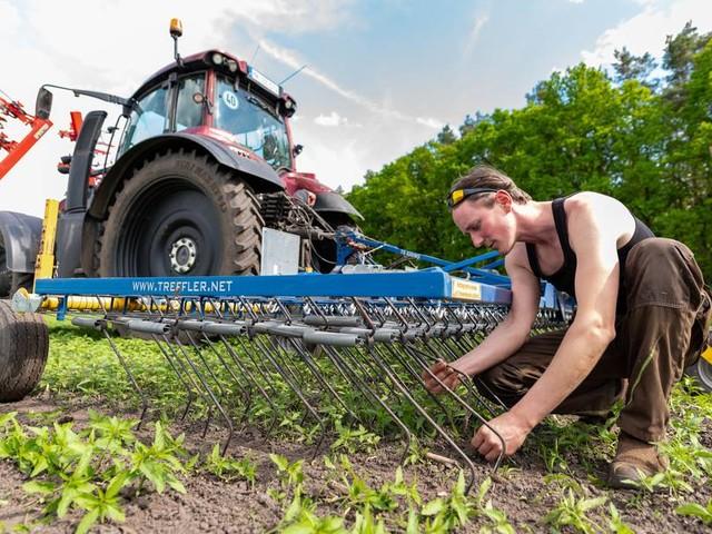 Ökolandbau in Deutschland hat zugenommen