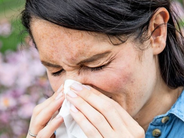 Heuschnupfen-Behandlung: Was hilft wirklich bei Pollenallergie?