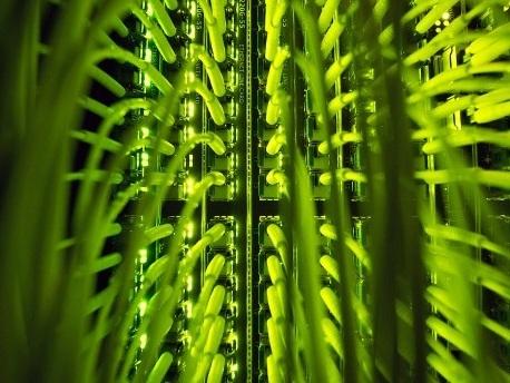 Union fordert höhere Strafen für Datendiebstahl