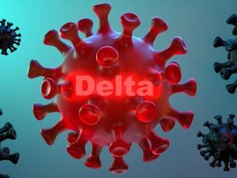 Was die Delta-Variante so ansteckend macht
