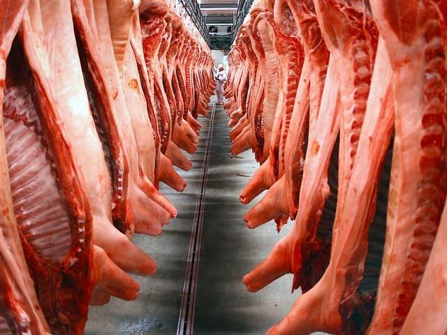 Massenware Fleisch: Schlachten im Akkord
