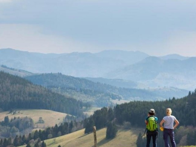 """""""Umwelteuro"""" im Schwarzwald für Tagesbesucher im Gespräch"""