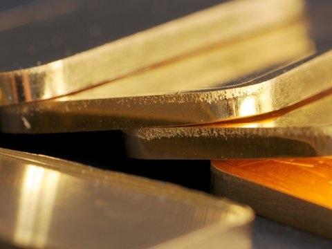Insolvenz von PIM Gold: Linke kritisiert Finanzaufsicht