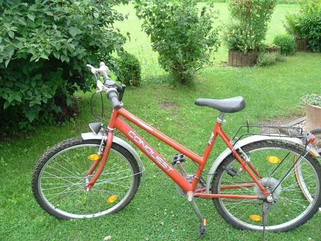 4 Fahrräder abzugeben alle verfügen über Gangschaltung Preise das rotfarbene Rad 80€ schwarz-blau 100€ violett 60€ gelbe mit Alurahmen dieses wird an Bastler abgegeben 20€ in Malborn