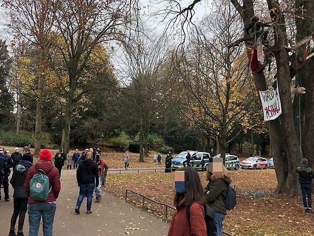 Protest um Dannenröder Forst: Umweltaktivisten besetzen Baum im Kölner Volksgarten