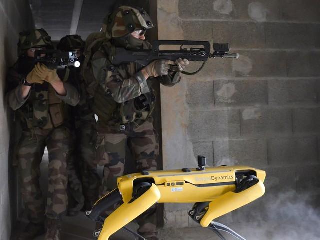 Kampfroboter: Boston Dynamics Roboterhund zieht mit der französischen Armee in den Kampf