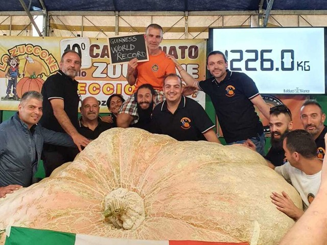 Weltrekord in Ludwigsburg: Mega-Kürbis im Blühenden Barock