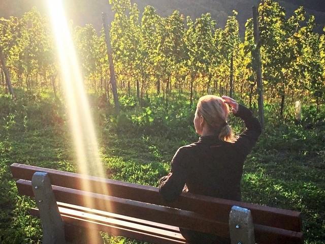 Weinwander-Tipp für die Südsteiermark: Im steilen Sausal