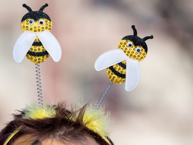 """""""Rettet die Bienen"""": 18,4 Prozent der Bayern stimmen für Volksbegehren Artenvielfalt"""
