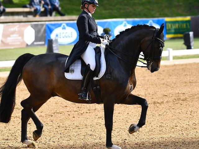 Dorothee Schneider und Showtime: Das Pferd passt auf die Reiterin auf