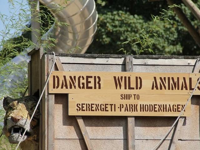 Freier Eintritt in den Serengeti-Park am 7. August 2017: Dank Radio-Aktion kostenlos durch die Wildnis