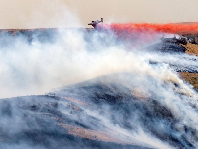 """Artikel in Fachjournal: """"Klima-Notfall"""": Tausende Wissenschaftler warnen vor """"unsäglichem menschlichen Leid"""""""