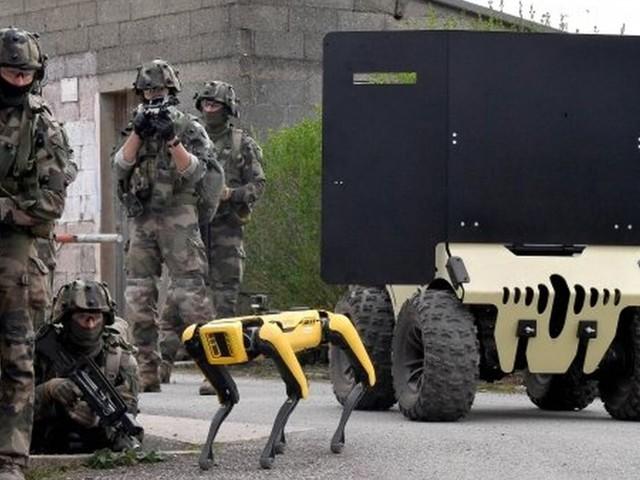 Kampfroboter: Fotostrecke – so trainieren Frankreichs Elite-Soldaten den Kampf mit Robotern