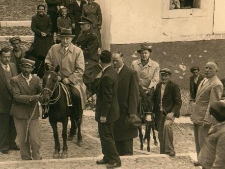Neues Gesetz in Griechenland: Kein Eselreiten für schwere Touristen