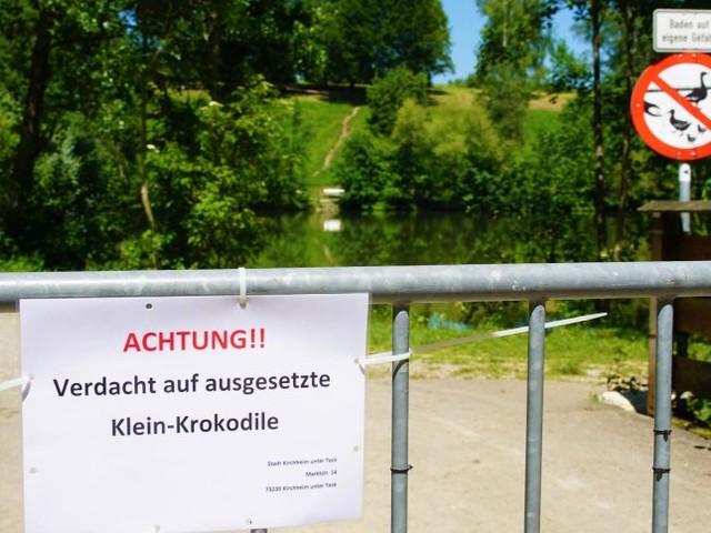 Baden-Württemberg: Stadt sucht drei Krokodile