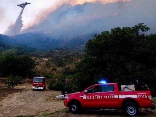 Waldbrände - Feuerwehren in der Türkei, Griechenland und Italien im Großeinsatz