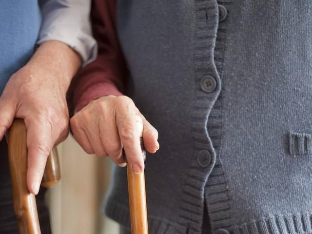 Gesetzliche Altersvorsorge - Ifo-Institut fordert: Neue Bundesregierung muss Rente bezahlbar machen