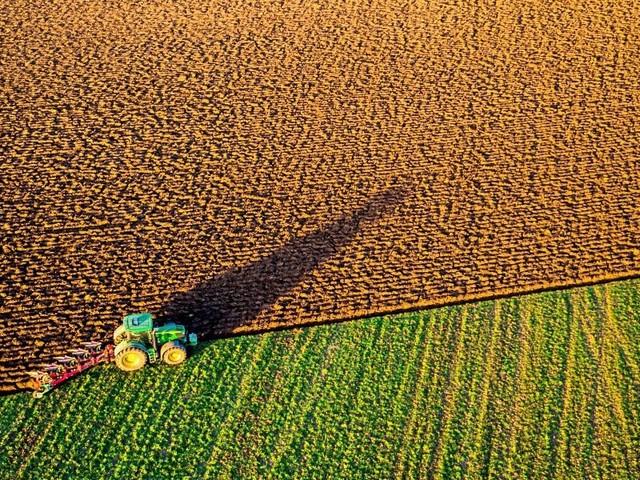 Steuern - Notenbank-Studie: Bauern haben die größten Vermögen